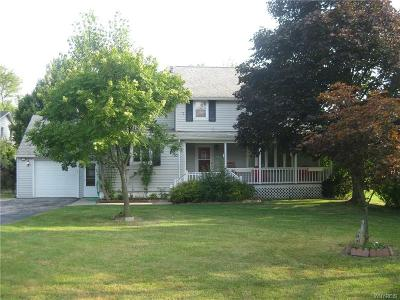 Williamsville Single Family Home For Sale: 135 Frankhauser Road