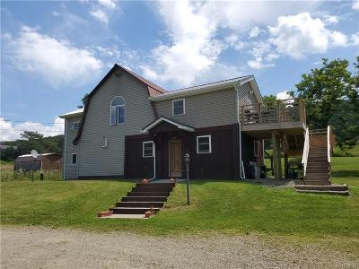 Cattaraugus County Single Family Home For Sale: 6190 Sommerville Valley Road