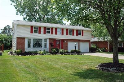 Erie County Single Family Home For Sale: 118 Wiltshire Road
