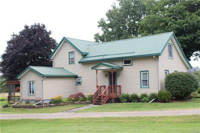 Genesee County Single Family Home For Sale: 9088 Creek Road