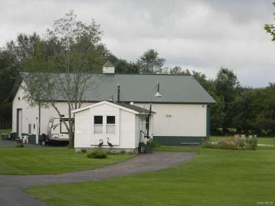 Cattaraugus County Single Family Home For Sale: 11181 Scotch Road