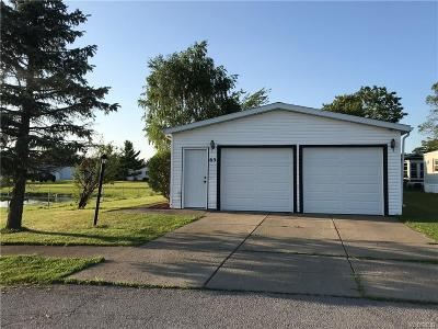 Akron Single Family Home For Sale: 65 Pocono Park