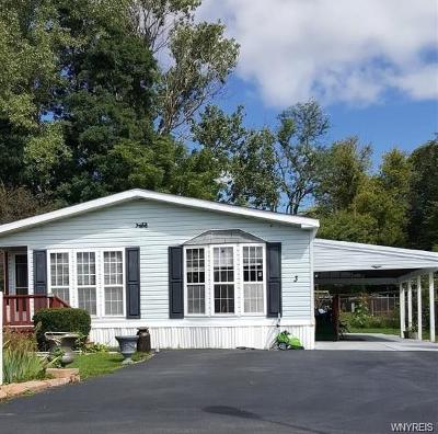 Genesee County Single Family Home For Sale: 5070 Clinton Street