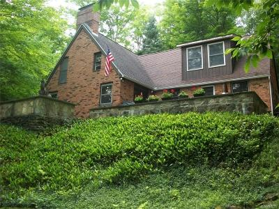 Allegany County, Cattaraugus County Single Family Home For Sale: 8322 County Road 49