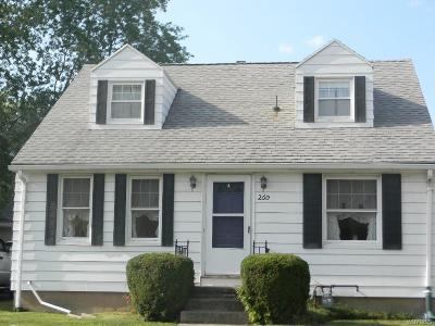 Single Family Home For Sale: 260 Thorncliff Road