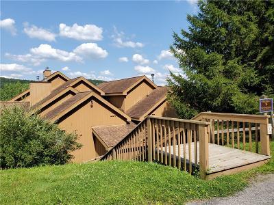 Ellicottville Single Family Home For Sale: B202 Snowpine