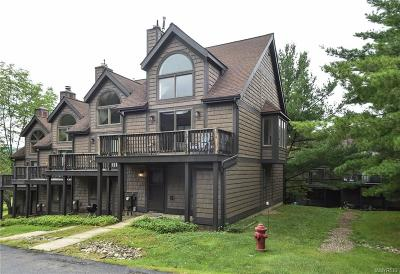 Cattaraugus County Condo/Townhouse For Sale: 18 Slopeside Rd-The Woods
