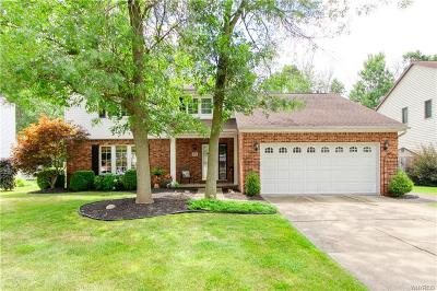 Amherst Single Family Home For Sale: 67 S Castlerock Lane