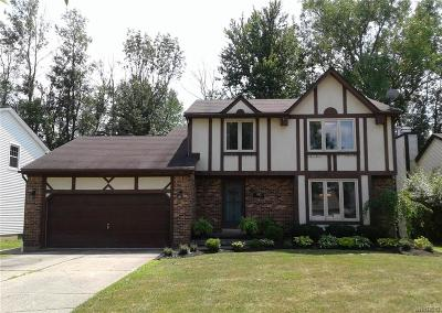 Amherst Single Family Home For Sale: 90 Mapleleaf Drive