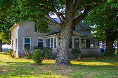 Brocton, Portland Single Family Home For Sale: 6608 Webster Road