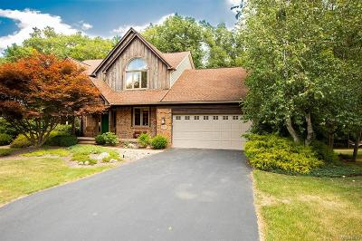 Orchard Park Single Family Home For Sale: 200 Curley Drive
