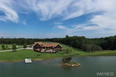 Erie County Single Family Home For Sale: 4993 Scrabble Hill Road