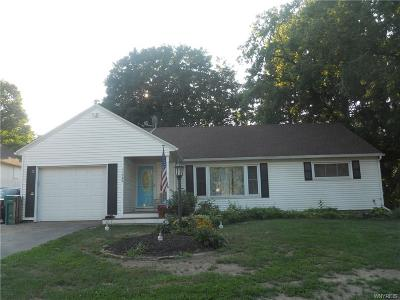Genesee County Single Family Home For Sale: 11062 S Lake Road