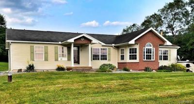 Cattaraugus County Single Family Home For Sale: 2 Barnside Lane
