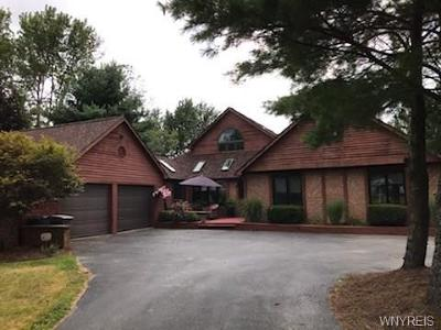 Orchard Park Single Family Home For Sale: 46 Fox Chapel Drive