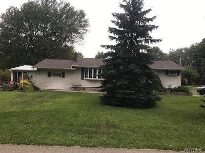 Single Family Home For Sale: 45 Lerczak Drive