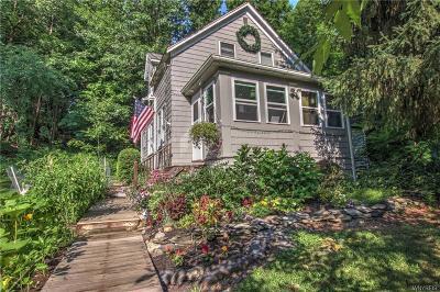 Alden Single Family Home For Sale: 149 Bullis Road