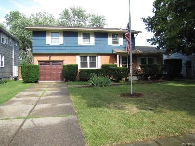Williamsville Single Family Home For Sale: 149 Ponderosa Drive