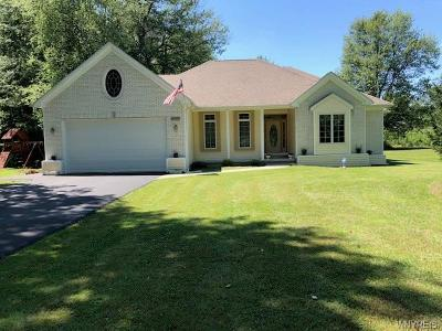 Amherst Single Family Home For Sale: 1850 Dodge Road