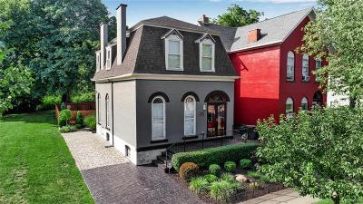 Erie County Single Family Home For Sale: 345 Virginia Street