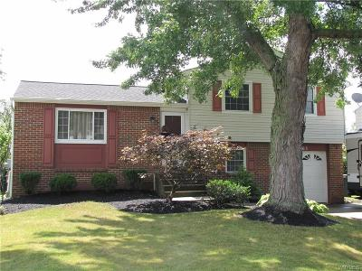 Lockport Single Family Home For Sale: 7063 Northview Drive