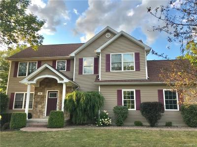 Orchard Park Single Family Home For Sale: 61 Meadowlawn Road