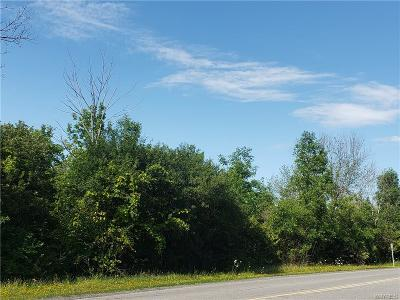 Lancaster Residential Lots & Land For Sale: 291 Erie Street