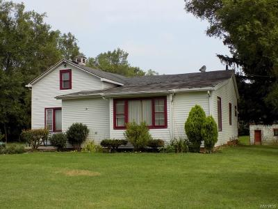 Clarence Single Family Home For Sale: 10990 Miland Road