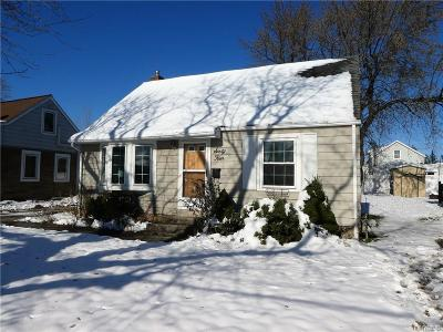 Cheektowaga Single Family Home For Sale: 64 Northcrest Avenue