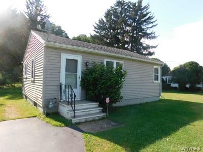 Cattaraugus County Single Family Home For Sale: 10723 Prospect Street