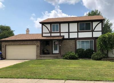 West Seneca Single Family Home For Sale: 21 Westwood Drive