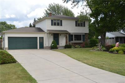 Williamsville Single Family Home For Sale: 685 Hopkins Road