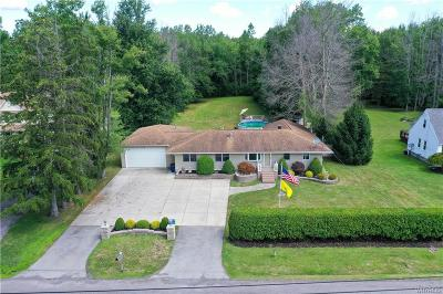 Amherst Single Family Home For Sale: 1064 N French Road
