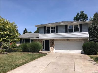 Amherst Single Family Home For Sale: 10 Swanson Terrace