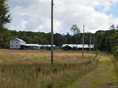 Allegany County, Cattaraugus County Single Family Home For Sale: 9002 Middle Road