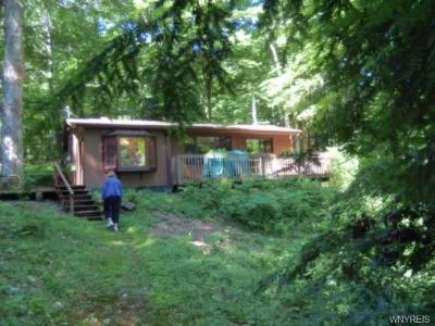 Java Single Family Home For Sale: Route 78 & 98