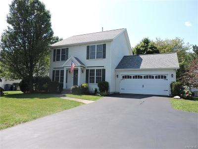 Amherst Single Family Home For Sale: 3530 Sweet Home Road
