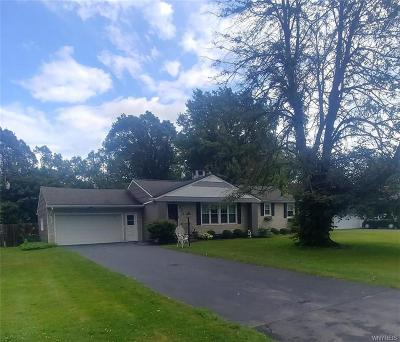 Williamsville Single Family Home For Sale: 4515 Hedgewood Drive