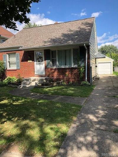 Amherst Single Family Home For Sale: 309 Springville Avenue