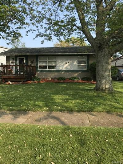 Amherst Single Family Home For Sale: 133 Hillcrest Drive