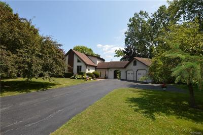 Niagara County Single Family Home For Sale: 3870 Youngstown Wilson Rd