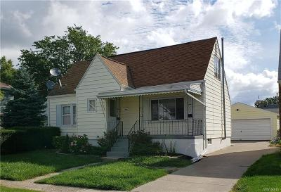 Cheektowaga Single Family Home For Sale: 243 Halstead Avenue