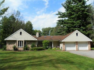 Single Family Home For Sale: 2875 New Road