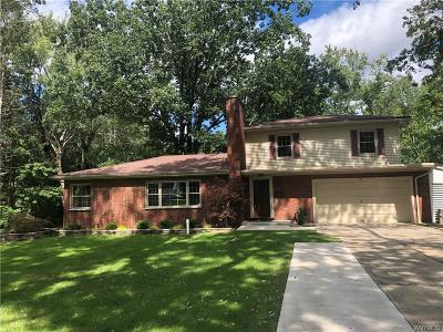 Orchard Park Single Family Home For Sale: 46 Crescent Drive