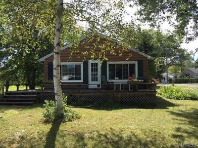 Evans NY Single Family Home For Sale: $158,800
