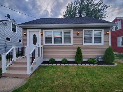 Buffalo Single Family Home For Sale: 30 Riverview Place