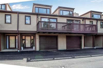 Amherst Condo/Townhouse Pending: 255 Old Meadow Drive