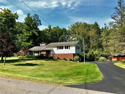 Hamburg Single Family Home For Sale: 5815 Cloverfield Drive