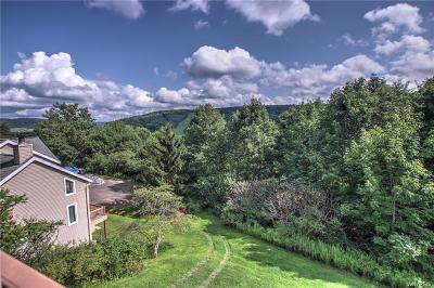 Cattaraugus County Single Family Home For Sale: 526 Deer Crossing Road