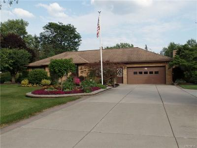 Amherst Single Family Home For Sale: 375 Heim Road
